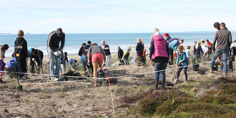 Coast Care volunteers at the beach