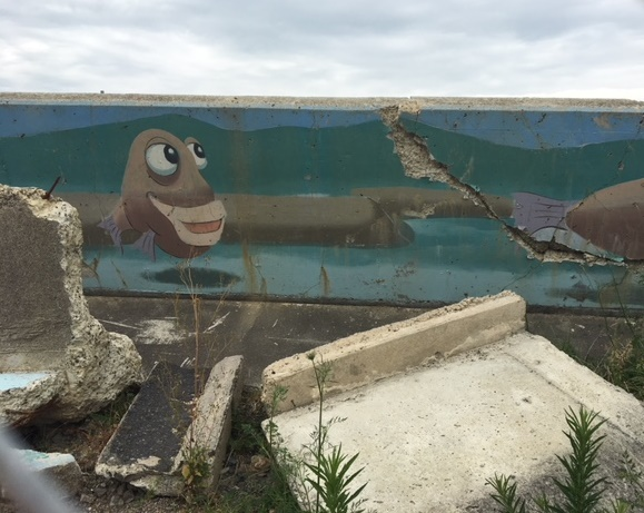 Low Res Image Of Broken College Road Flood Wall Section With Tuna Eel Taken 18 December 2017